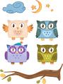 Owls family vector