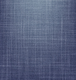 Jeans texture version 3 vector
