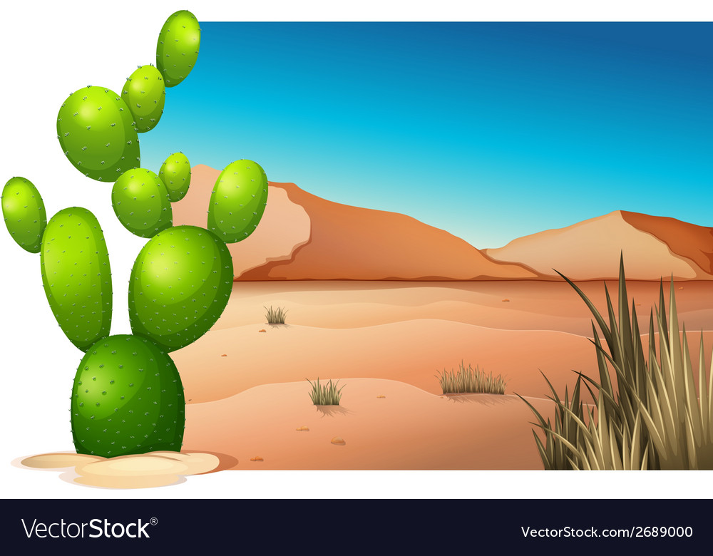 A cactus at the desert vector | Price: 1 Credit (USD $1)