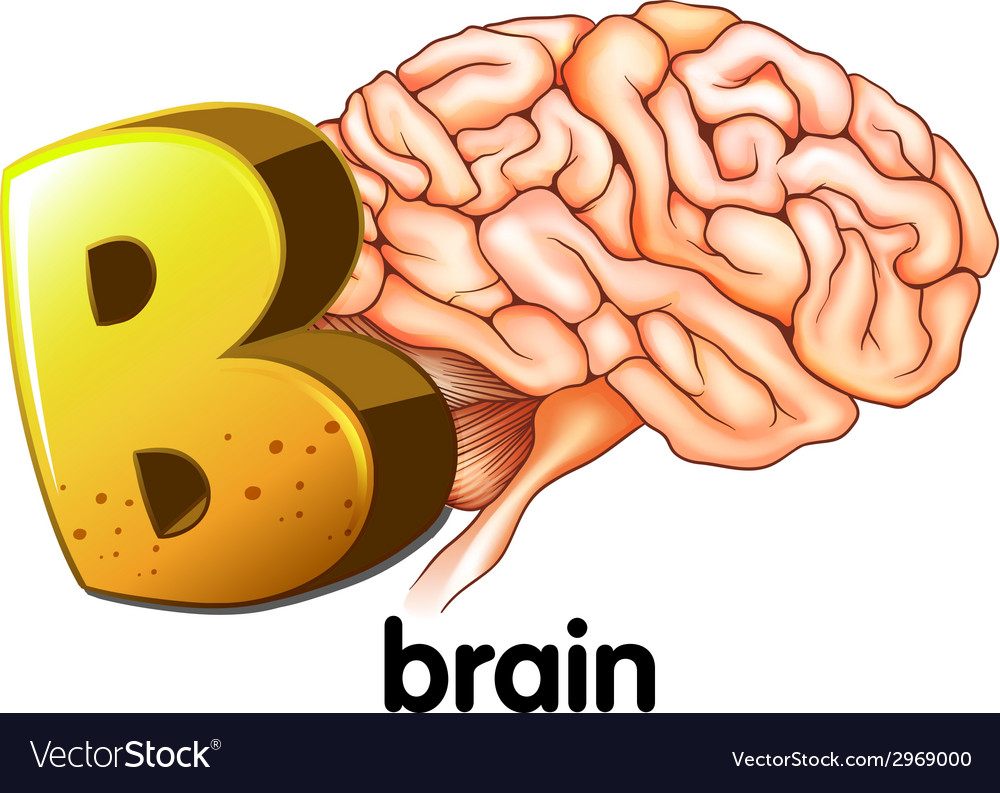 A letter b for brain vector | Price: 1 Credit (USD $1)