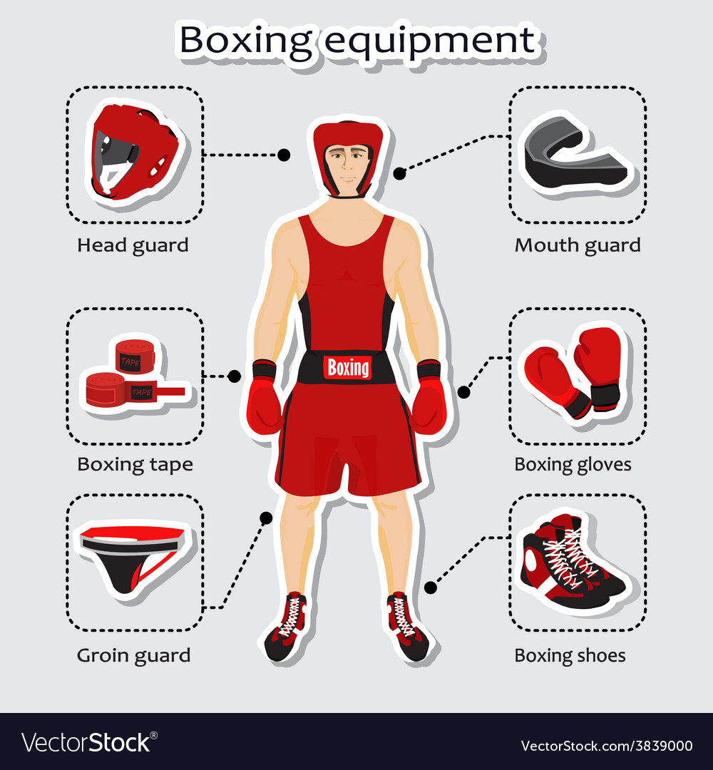 Sport equipment for boxing martial arts vector | Price: 1 Credit (USD $1)