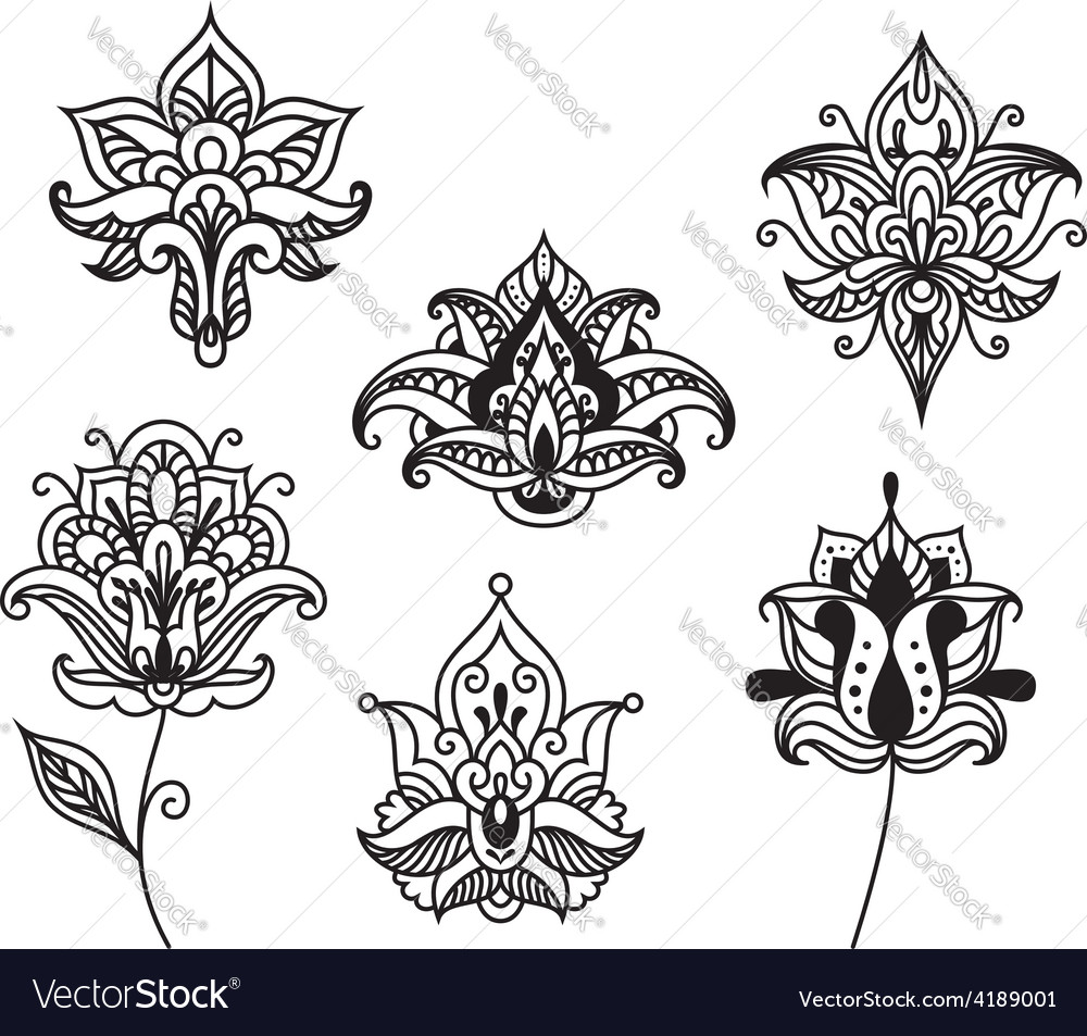 Decorative persian and indian paisley flowers vector | Price: 1 Credit (USD $1)