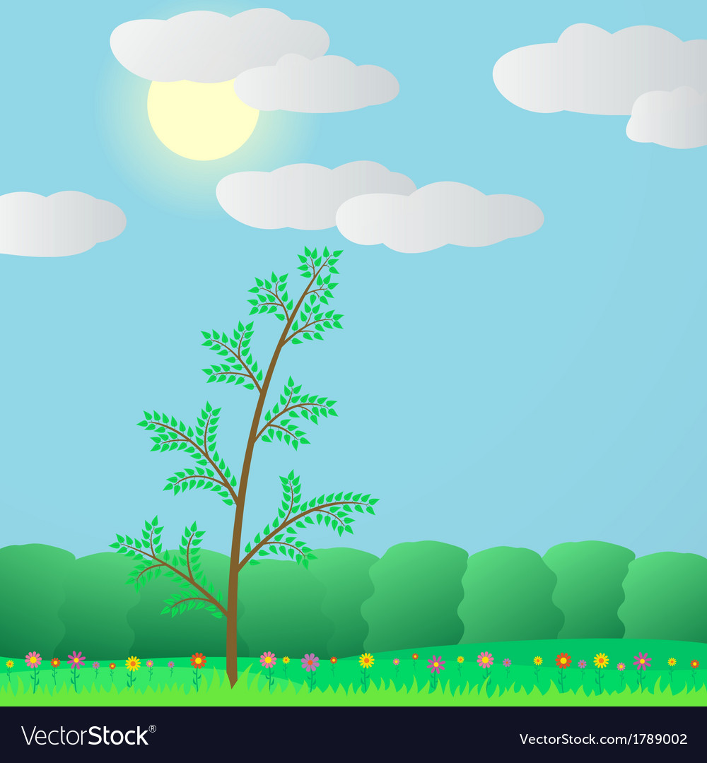 Summer in the forest vector | Price: 1 Credit (USD $1)
