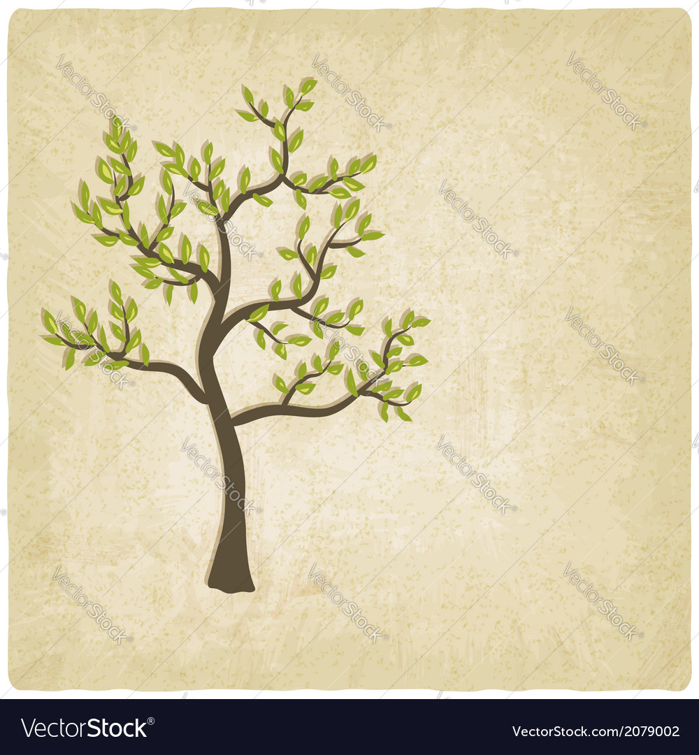 Tree old background vector | Price: 1 Credit (USD $1)