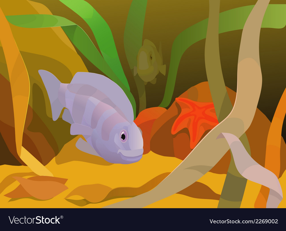 Underwater view vector   Price: 1 Credit (USD $1)