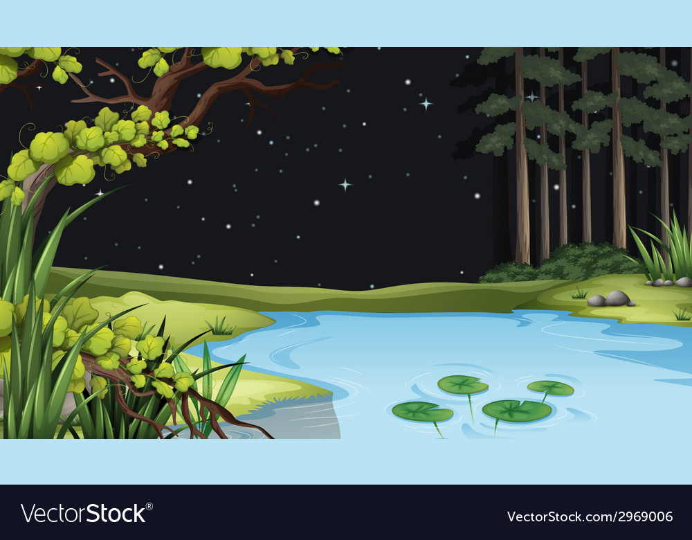 A waterform at the forest vector | Price: 1 Credit (USD $1)