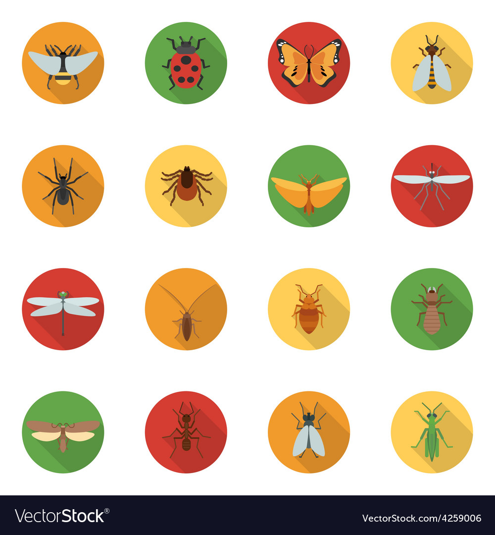 Insects icons flat vector | Price: 1 Credit (USD $1)