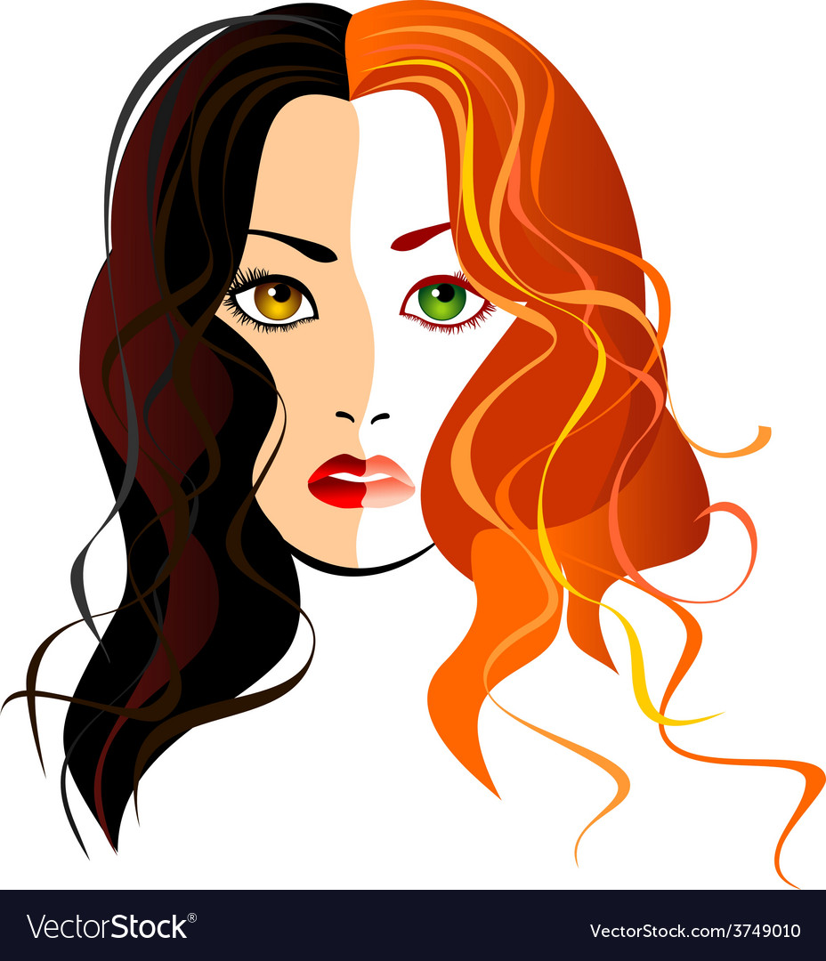 A girl blondes and brunettes in one person vector | Price: 1 Credit (USD $1)