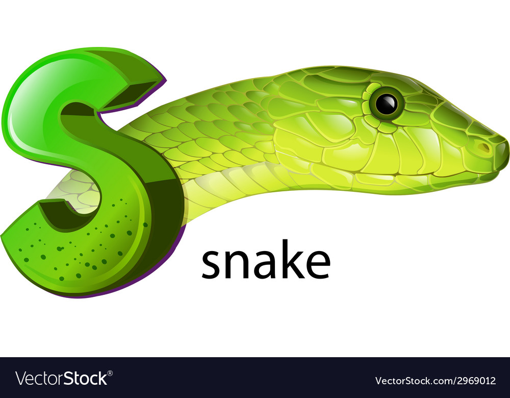 A snake and a letter s vector | Price: 1 Credit (USD $1)
