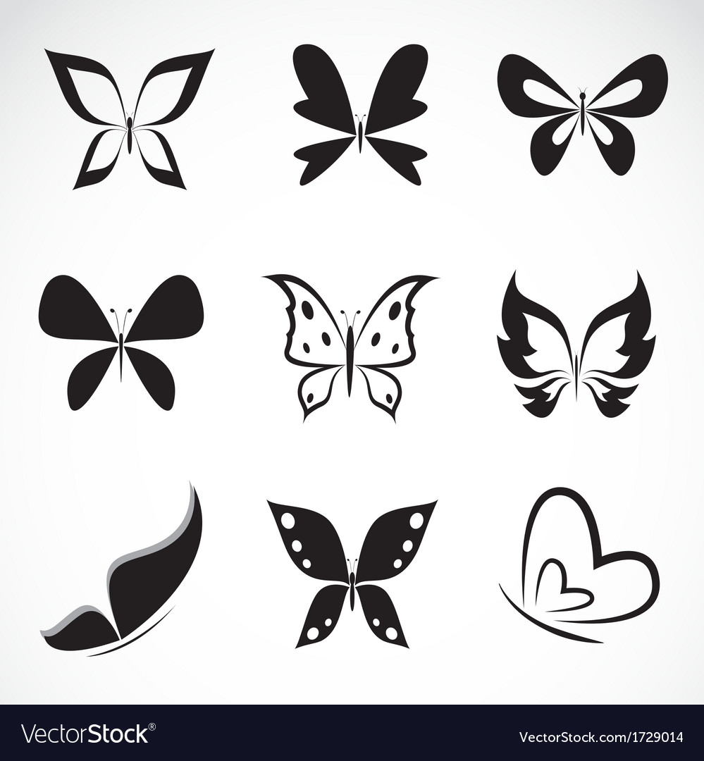 Butterfly group vector | Price: 1 Credit (USD $1)