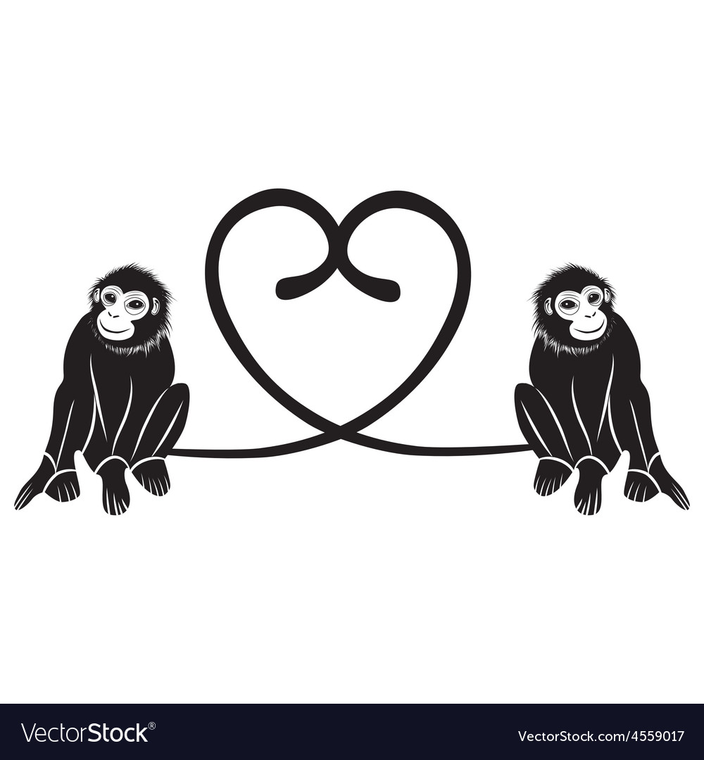 Animal love couple of cute monkeys shaped heart of vector | Price: 1 Credit (USD $1)