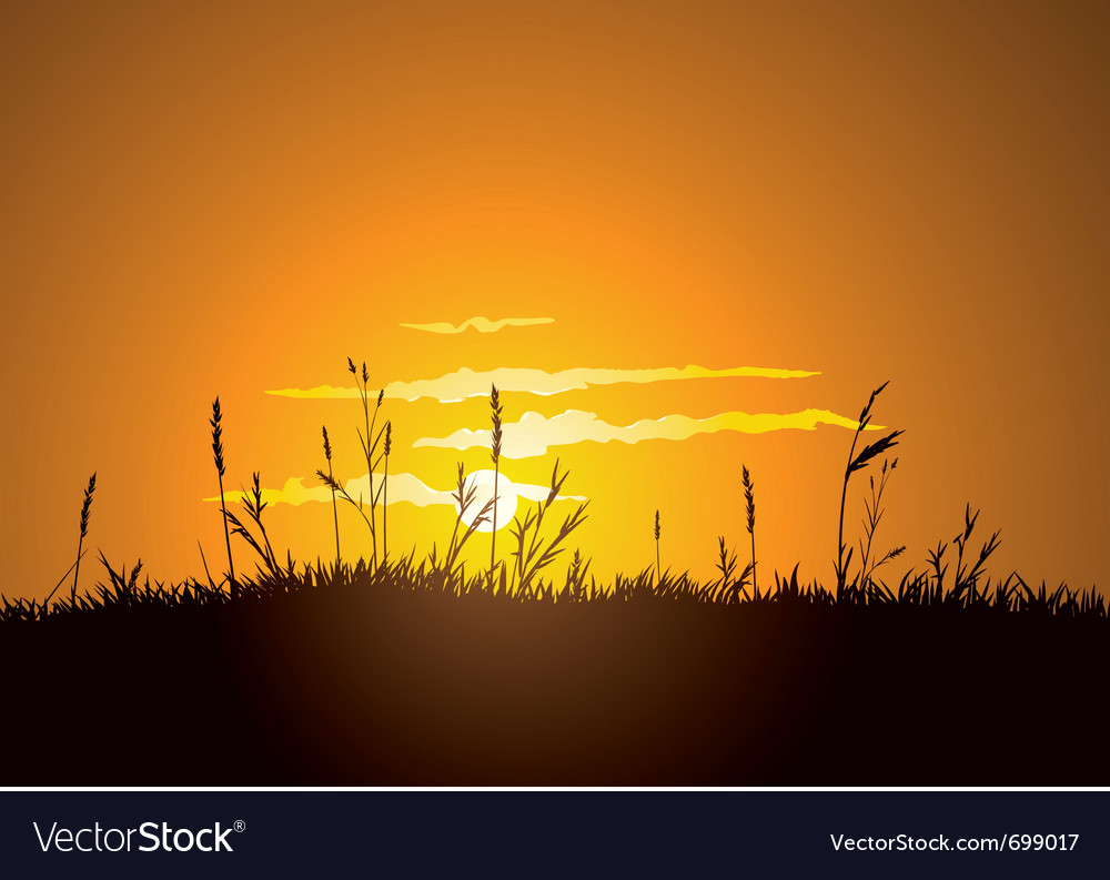 Grassy sunrise vector | Price: 1 Credit (USD $1)