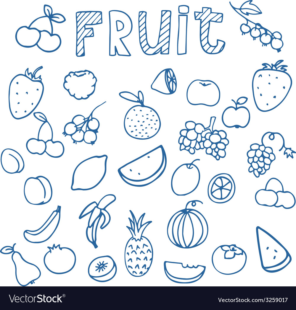 Set of fruit doodle drawings vector | Price: 1 Credit (USD $1)
