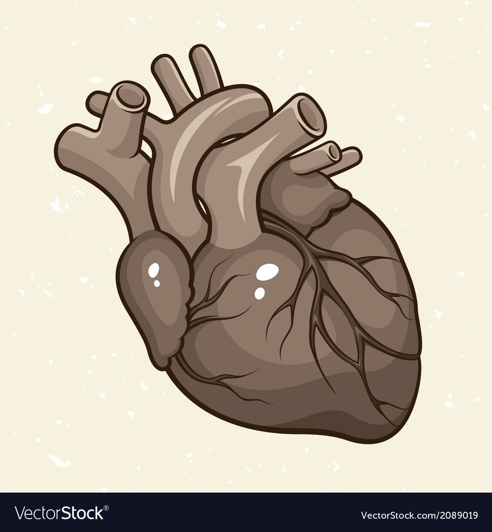 Grunge human heart vector | Price: 1 Credit (USD $1)