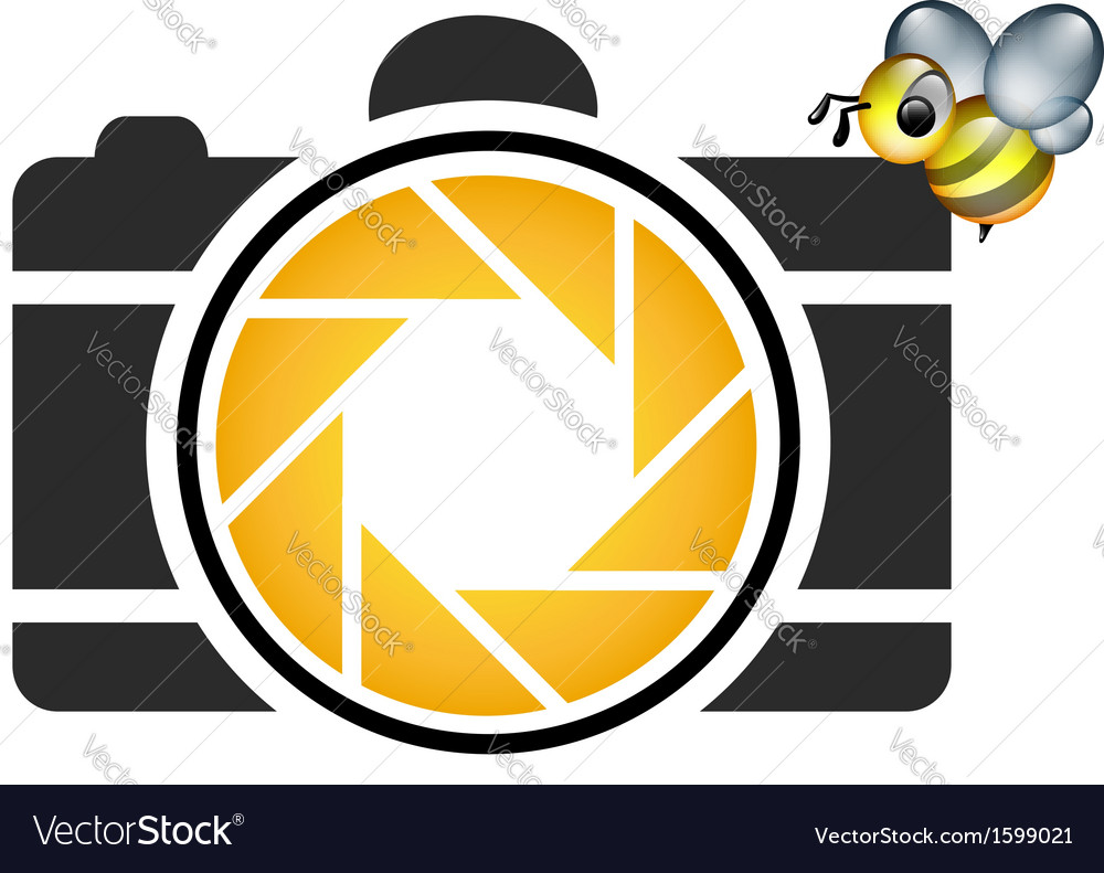Photography logo with cute honeybee vector | Price: 1 Credit (USD $1)