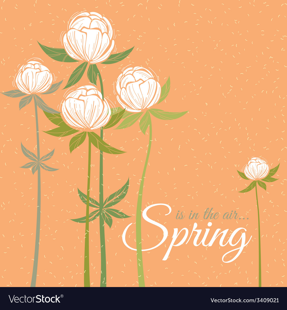 Spring wildflowers vector | Price: 1 Credit (USD $1)