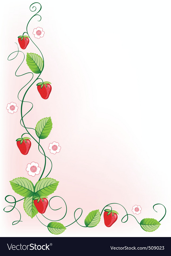 Ripe strawberries and green leaves with flowers vector | Price: 1 Credit (USD $1)