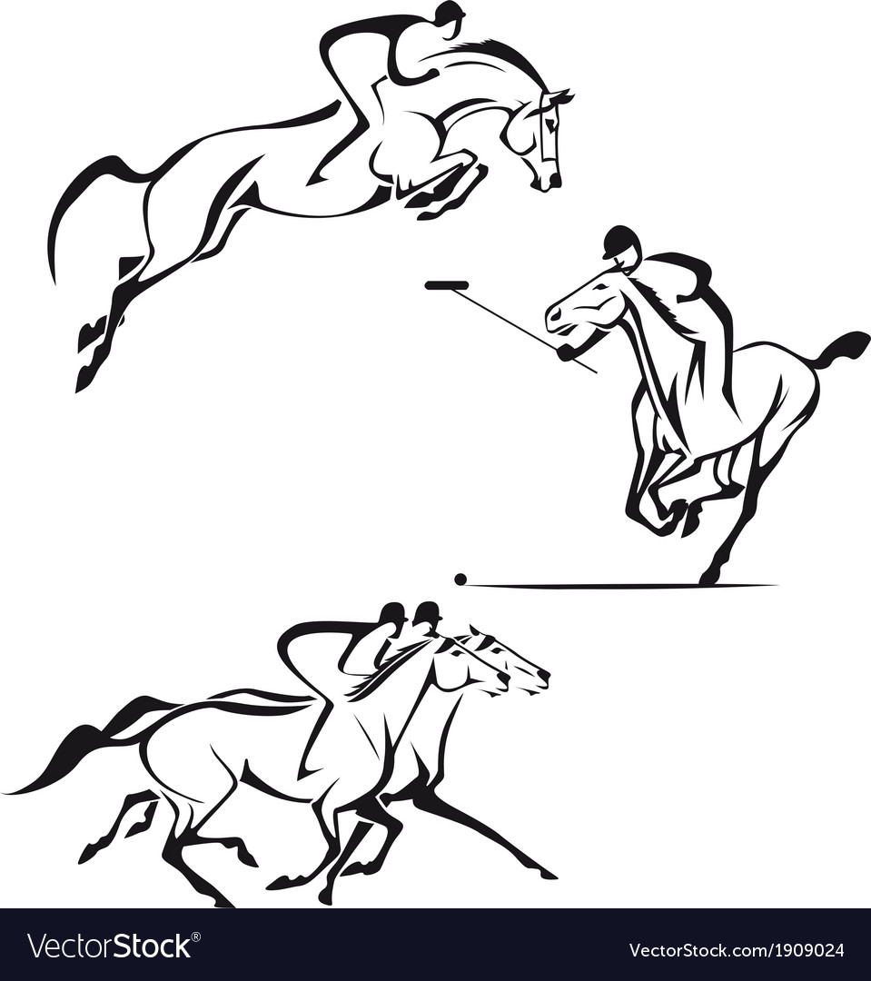 Equestrian sports vector | Price: 1 Credit (USD $1)