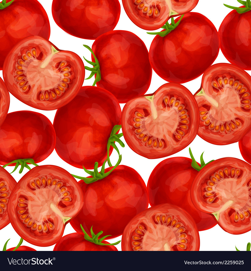 Tomato seamless pattern vector | Price: 1 Credit (USD $1)