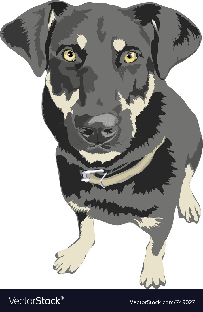 Dog posed isolated vector | Price: 1 Credit (USD $1)