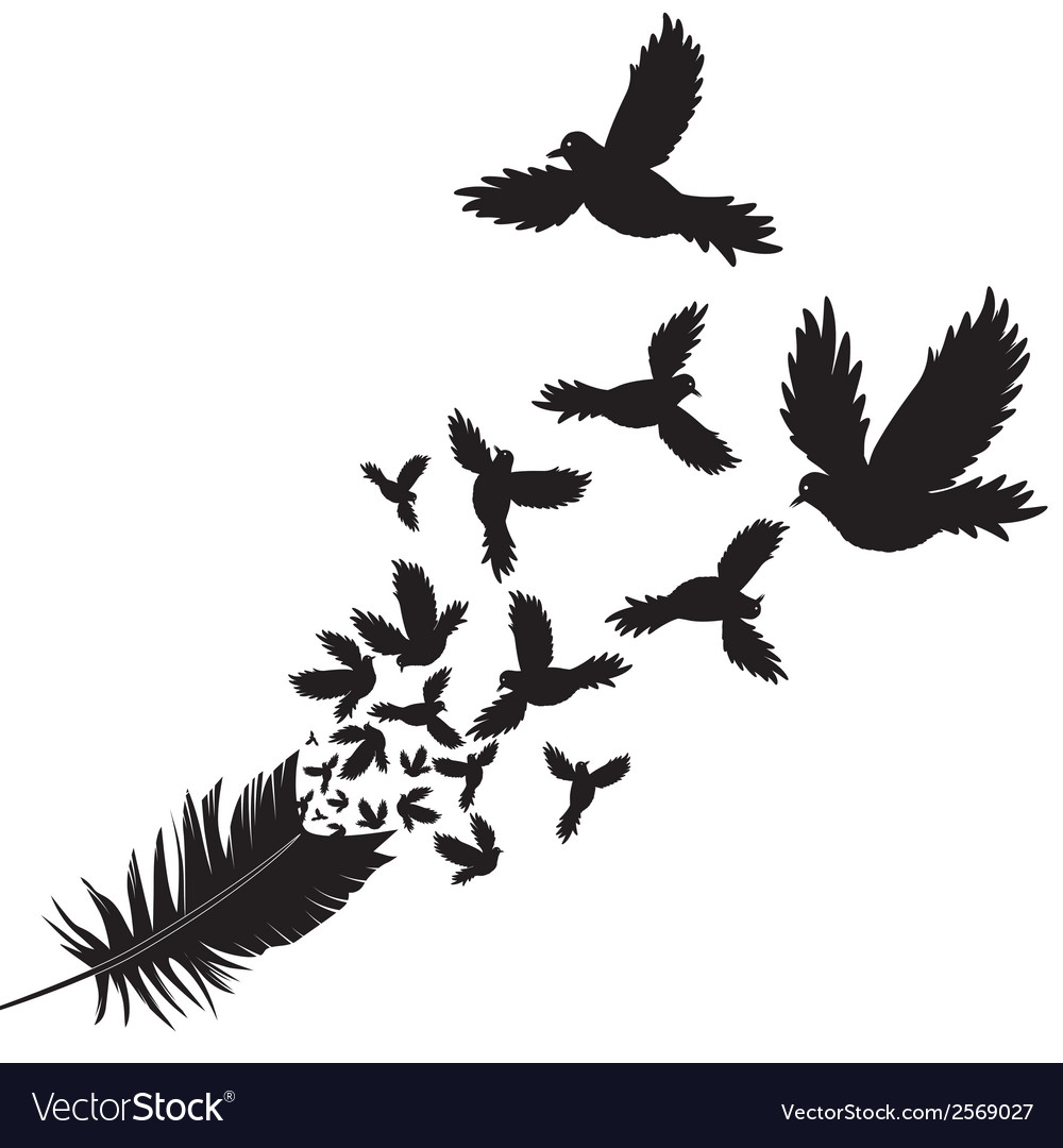 Feather of bird vector | Price: 1 Credit (USD $1)