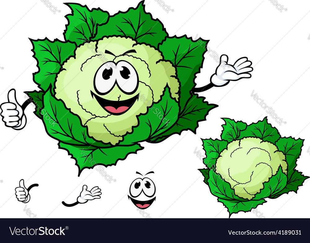 Happy smiling cartoon cauliflower vegetable vector | Price: 1 Credit (USD $1)