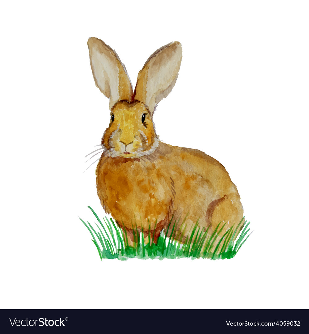 Watercolor bunny on the meadow vector   Price: 1 Credit (USD $1)
