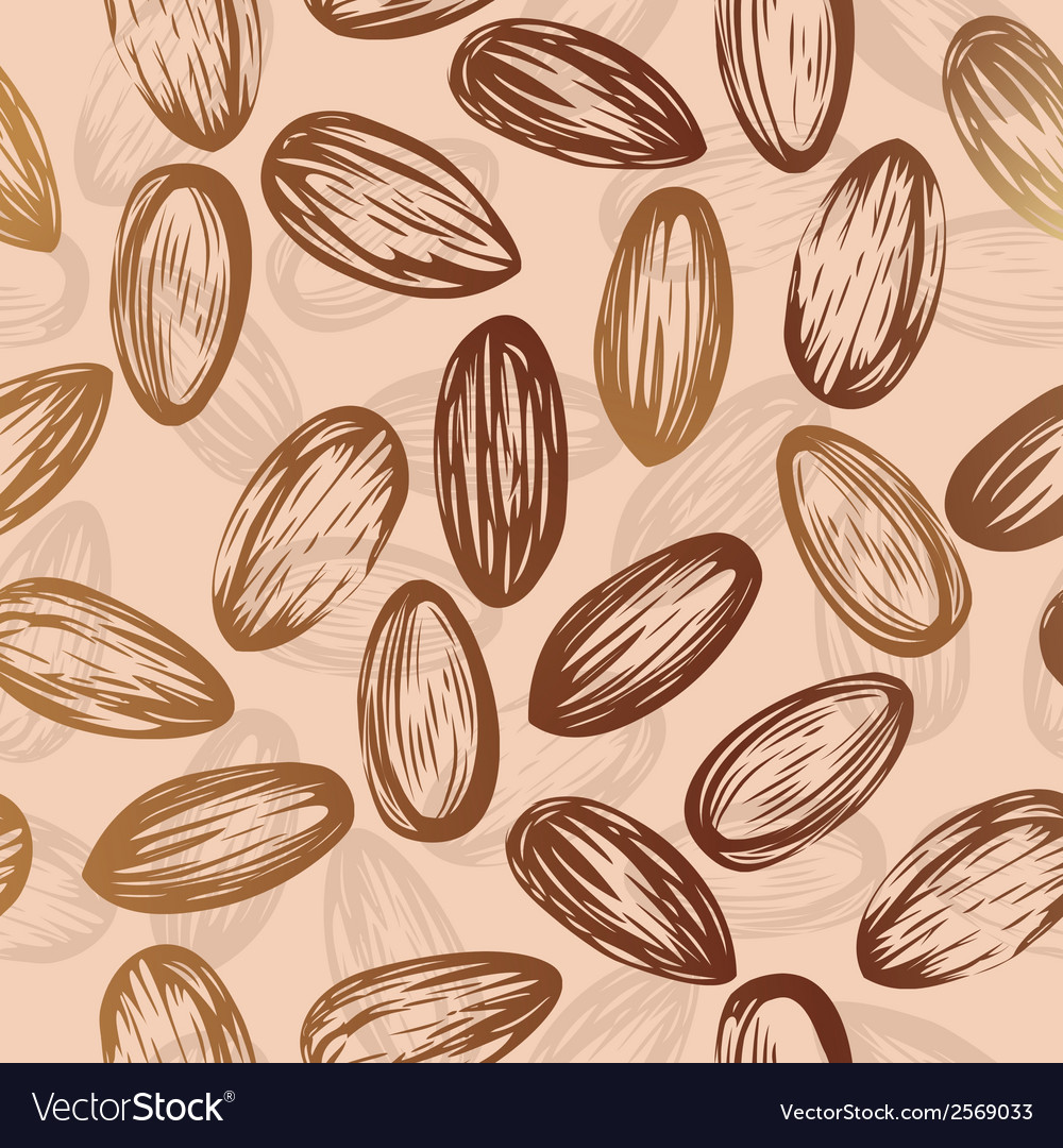Almonds nut seamless background drawing of nuts vector | Price: 1 Credit (USD $1)