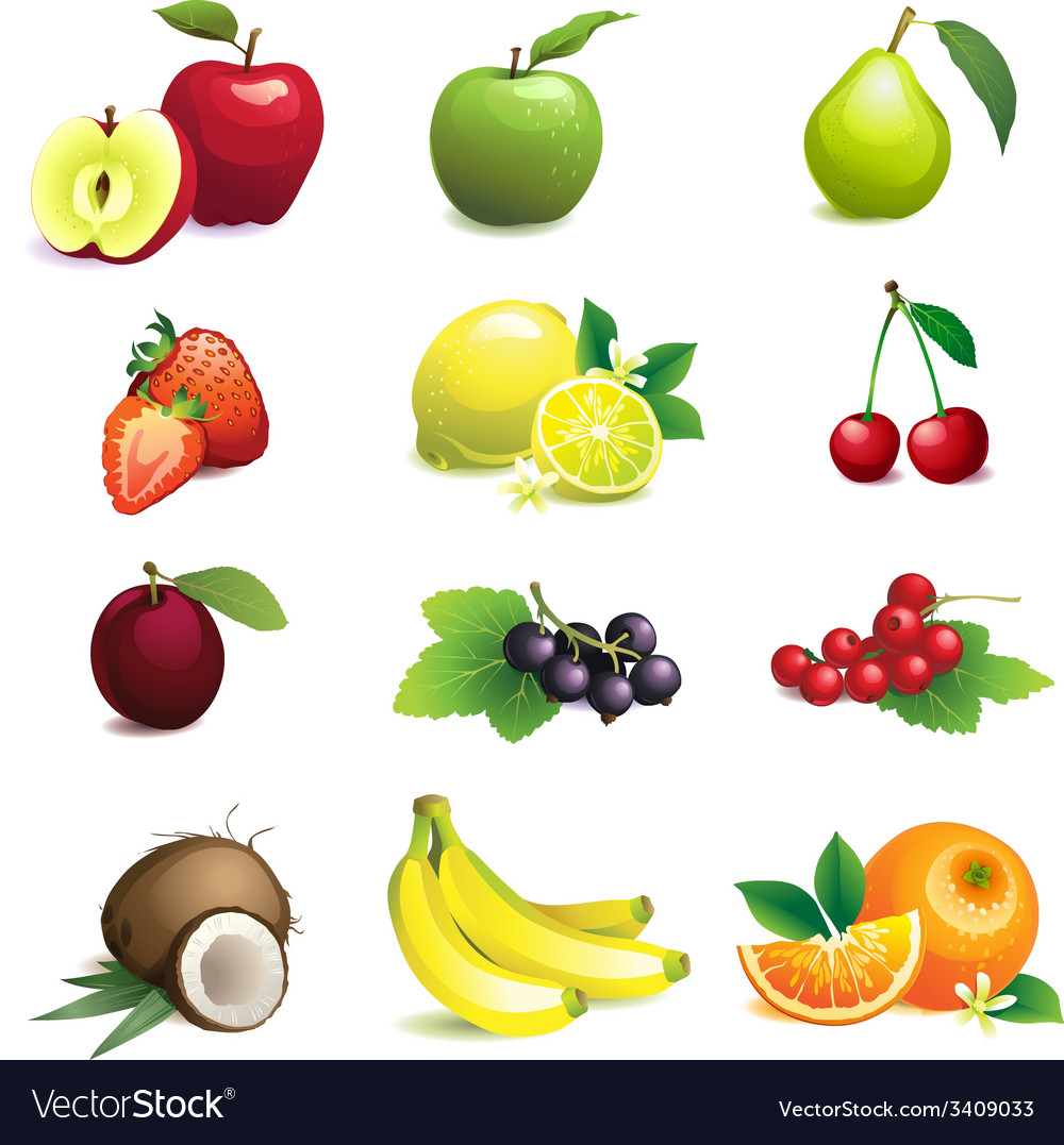 Set of different fruits with leaves and flowers vector | Price: 1 Credit (USD $1)