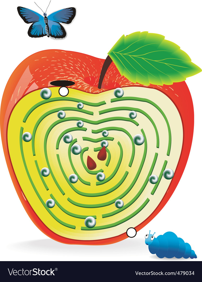 Labyrinth in apple vector