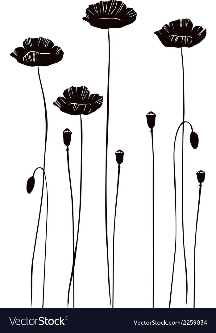 Poppy silhouettes vector | Price: 1 Credit (USD $1)
