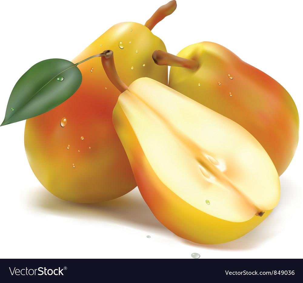 Juicy pear vector | Price: 1 Credit (USD $1)
