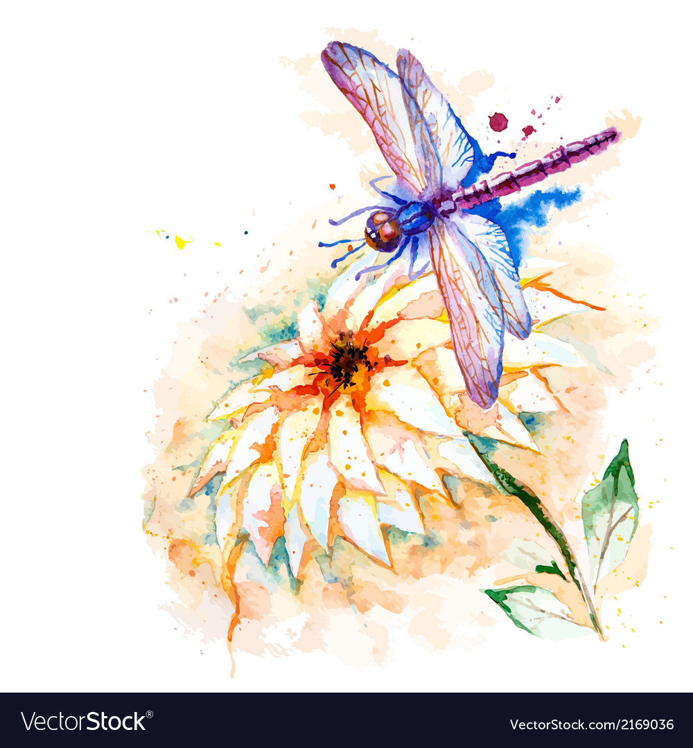Water color dragonfly with lily flower vector | Price: 1 Credit (USD $1)
