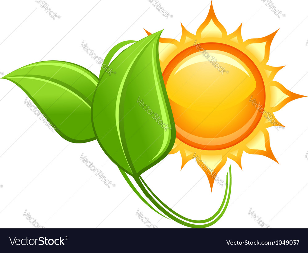 Sun and green leaves in glossy style vector | Price: 1 Credit (USD $1)