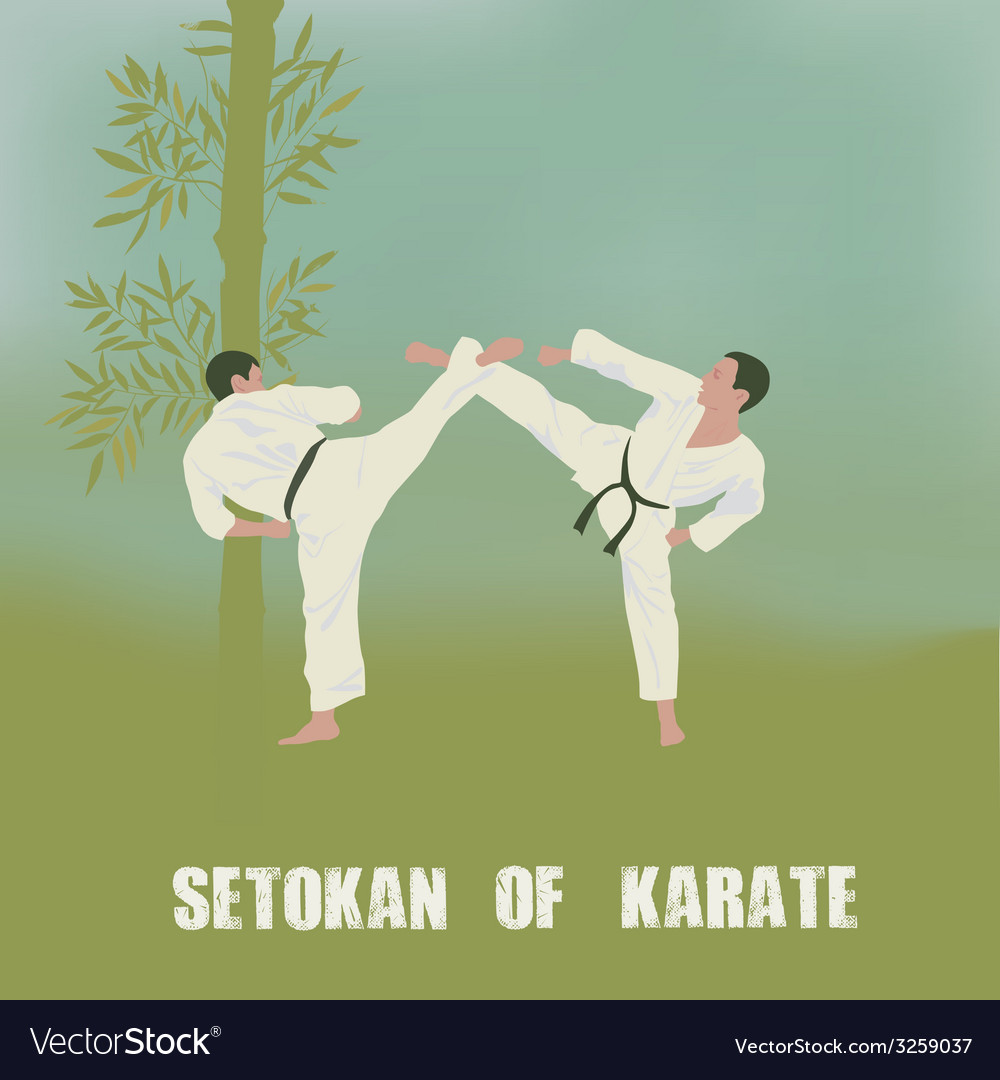Two men are engaged in karate vector | Price: 1 Credit (USD $1)