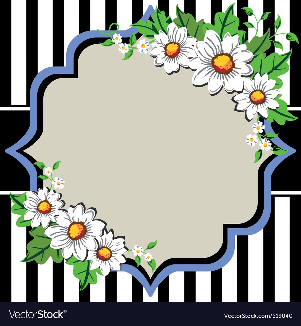 White daisy flowers frame with vector | Price: 1 Credit (USD $1)