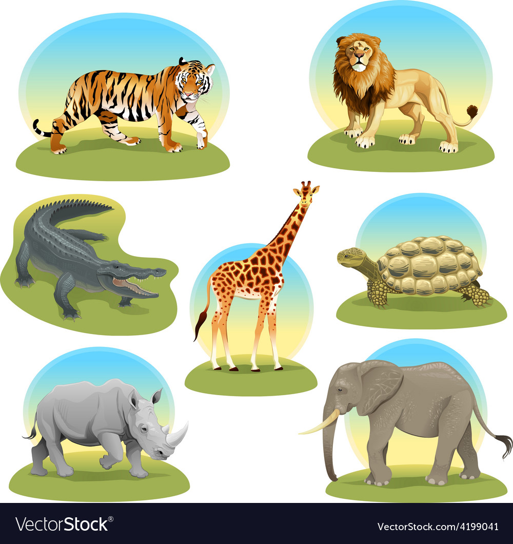 African animals with graphic backgrounds vector | Price: 1 Credit (USD $1)