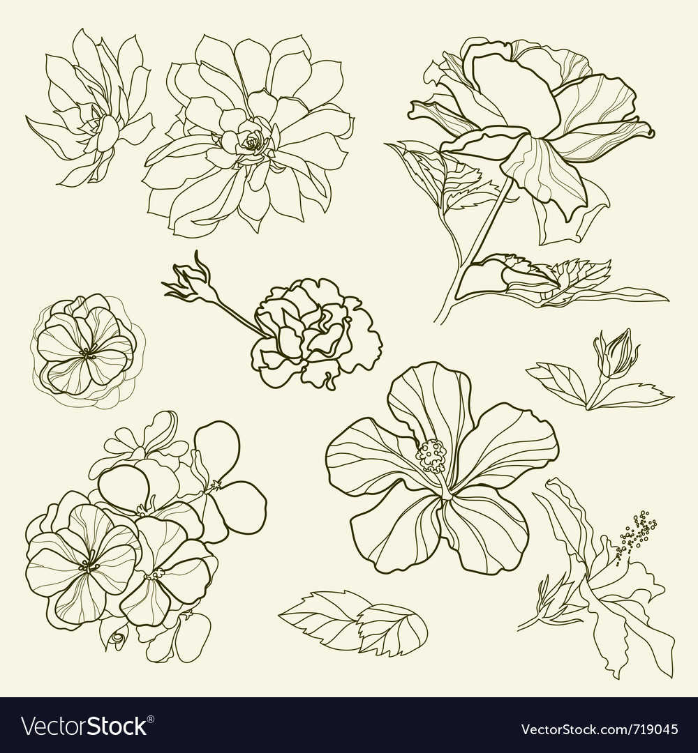 Floral freehand vector | Price: 1 Credit (USD $1)