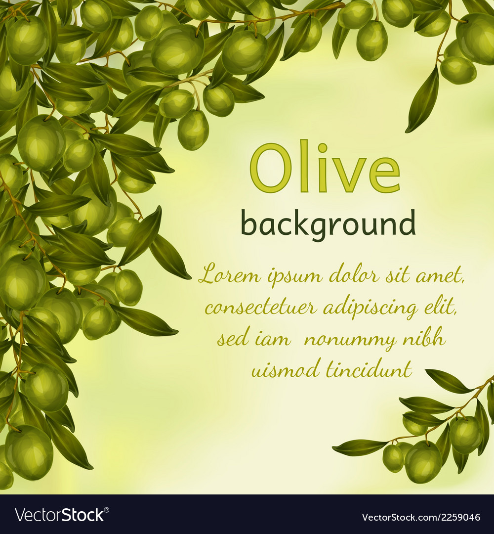 Olive oil background vector | Price: 1 Credit (USD $1)