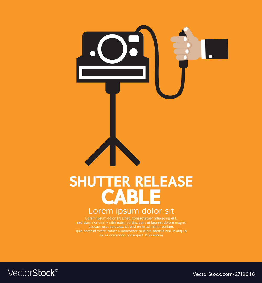 Shutter release cable vector | Price: 1 Credit (USD $1)