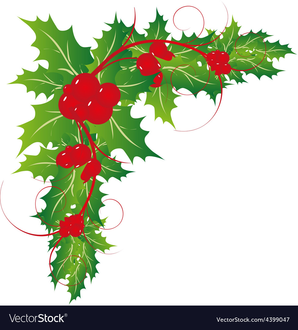 Christmas holy leaves ornament vector | Price: 1 Credit (USD $1)