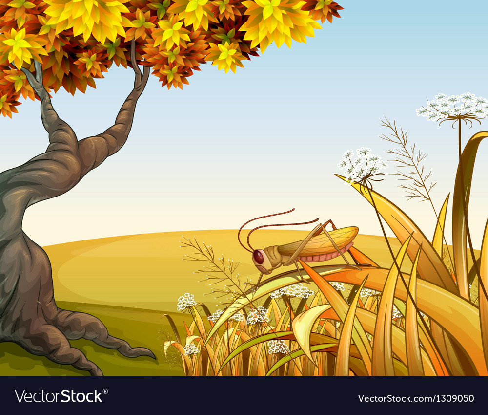 A grasshopper near the tree vector