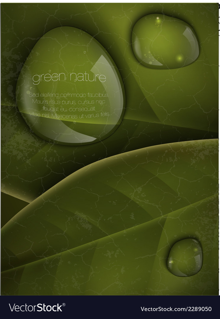 Dew drops on green leaves vector | Price: 1 Credit (USD $1)