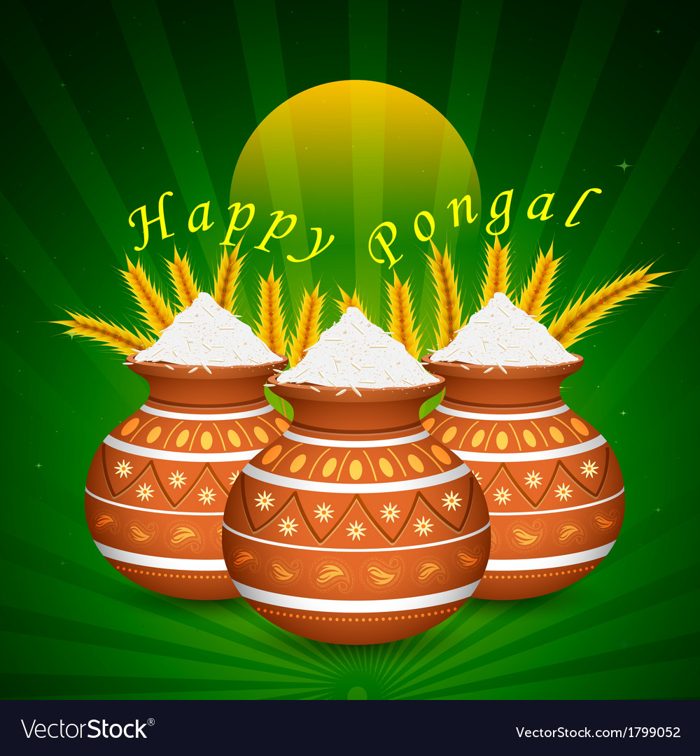 Happy pongal vector | Price: 1 Credit (USD $1)