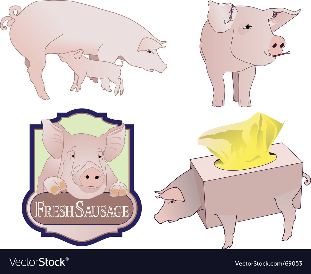 Pig collection vector | Price: 1 Credit (USD $1)