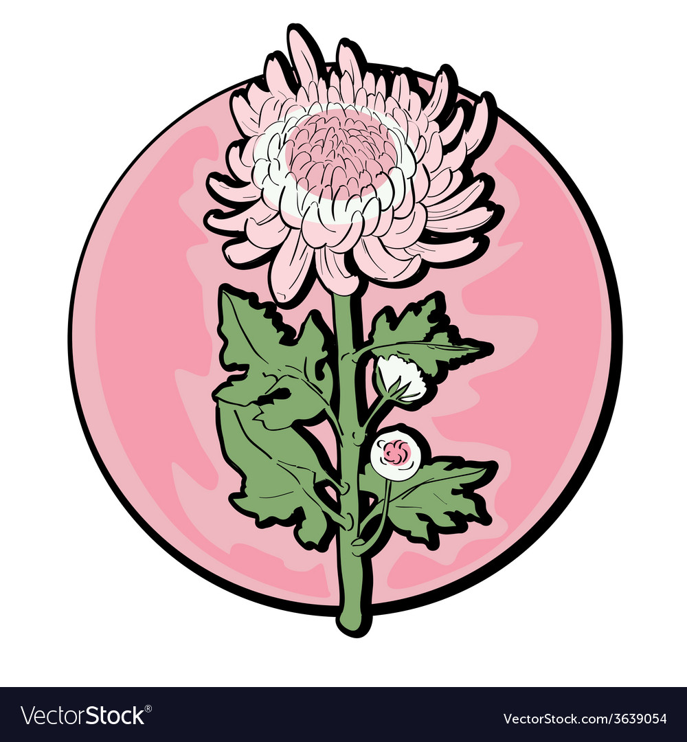 Chrysanthemum clip art vector | Price: 1 Credit (USD $1)