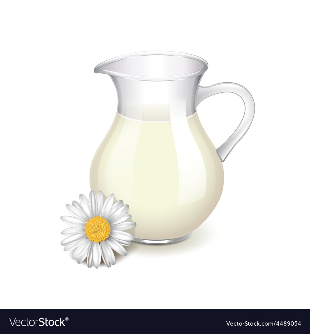Glass jug with milk and chamomile isolated vector | Price: 3 Credit (USD $3)