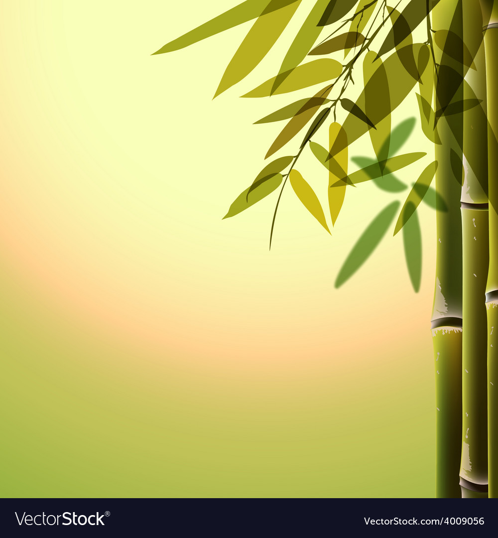 Bamboo trees and leaves at sunset time vector | Price: 1 Credit (USD $1)