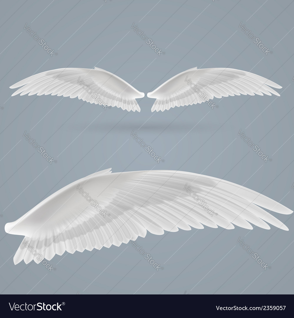 Inspire wings vector | Price: 1 Credit (USD $1)