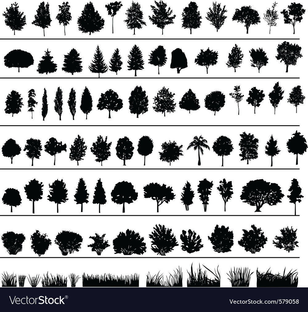 Trees bushes grass vector | Price: 1 Credit (USD $1)